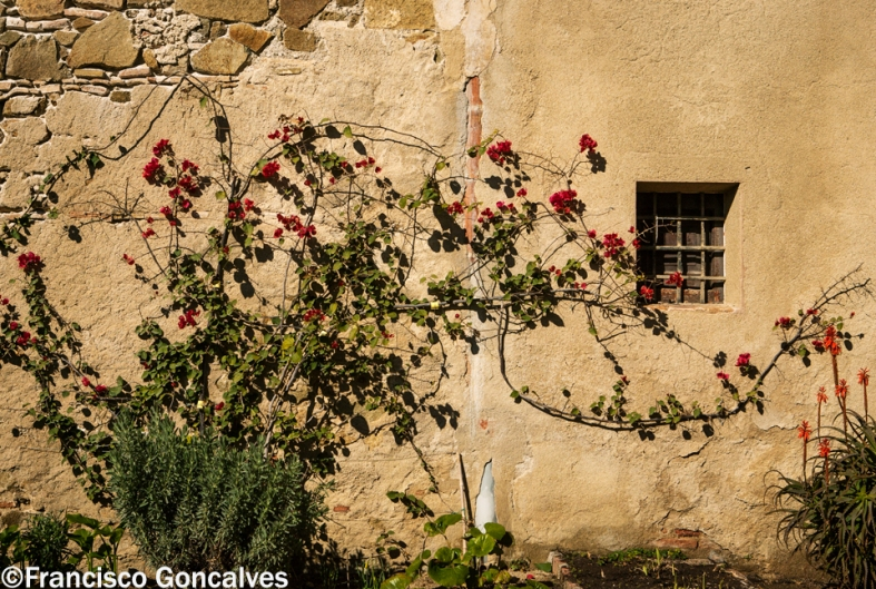 Los jardines del monasterio / The monastery gardens