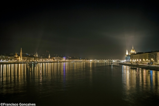 Danube by night