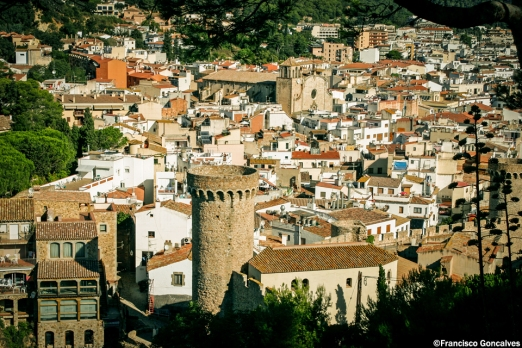 View of the town from the medieval walls
