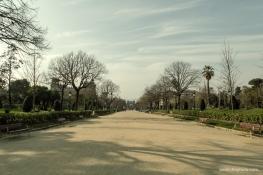 Las caminerías con el Arc de Triomf al fondo