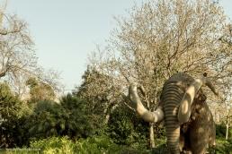 El famoso Mamut