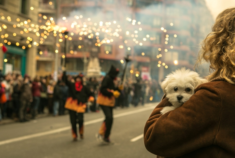 Correfocs en las celebraciones del Año Nuevo Chino