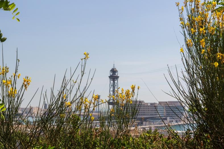 El puerto tras las flores