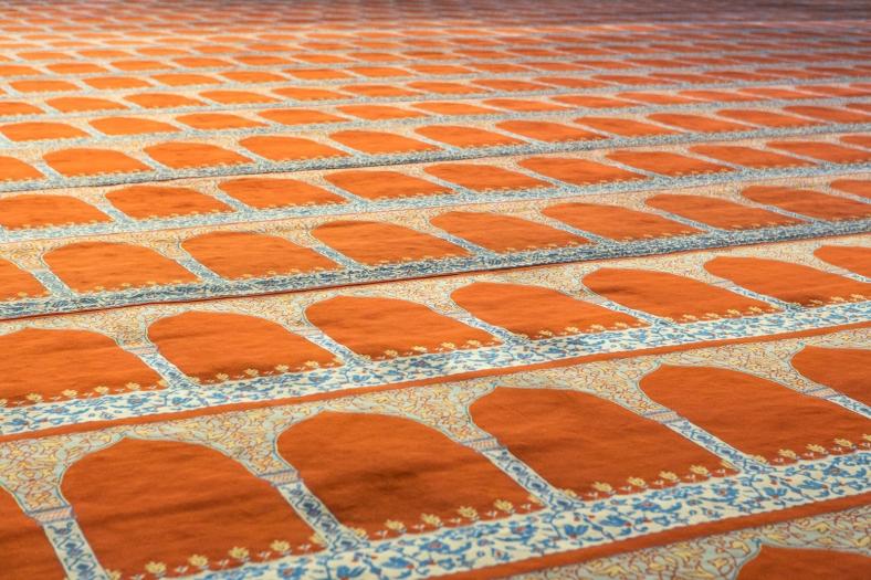 La alfombra del interior